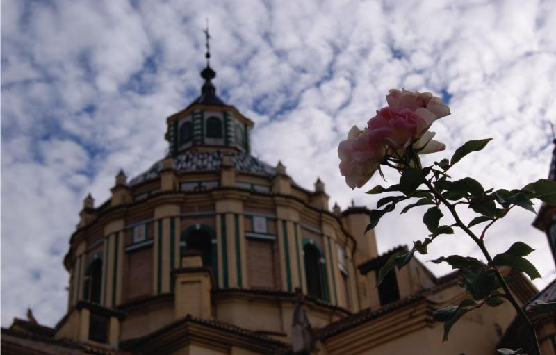 Basílica de la Inmaculada y de San Juan de Dios [Granada]
